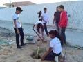 Ações de arborização ocorrem em 3 escolas: Anézio Leão, Professora Heloisa Helena e Luiza de Castro. Cerca de 190 de Juazeiro e Petrolina participaram.