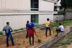 Ações de Arborização movimentam escolas