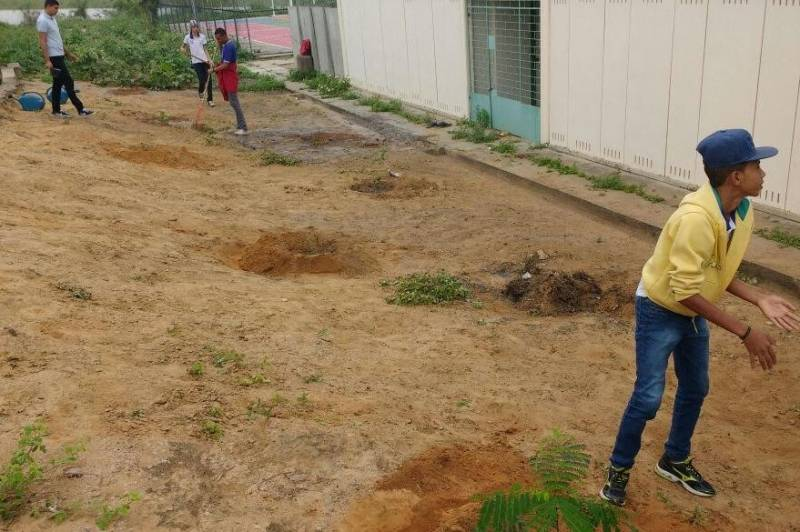 Atividades de Arborização. Colégio Democrático Tancredo Neves. Senhor do Bonfim (BA). 31/05/2017.
