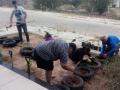 Atividade Jardinagem. UNIVASF-CCA. Petrolina-PE.  06/07/2019.