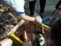 Atividade Horta Agroecológica.Escola CMEI Nosso Espaço. Petrolina-PE. 12/04/2019.