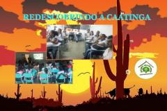 Ações para valorização da Caatinga