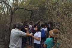 Alunos e professores fazem trilha ecológica