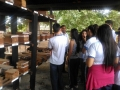 Visita técnica à Embrapa/Semiárido. Escola Jornalista João Ferreira Gomes. Petrolina-PE. 31/05/2017.