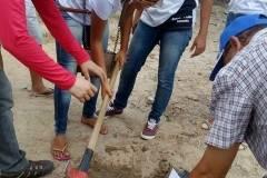 Alunos e Professores Mobilizados Para Arborização de Escolas