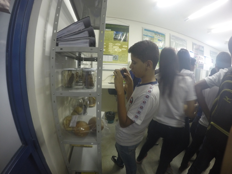Visita técnica ao CRAD (Univasf) - Escola Estadual Dr. Pacífico da Luz - Petrolina-PE - 13.11.15
