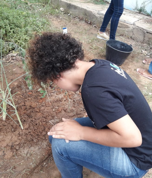 Atividade Hortas Escolares. Escola Artur Oliveira. Juazeiro-BA. 13/03/2019.