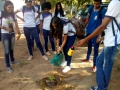 Atividade arborização. Escola Rui Barbosa. Juazeiro-BA. 20/03/2019.