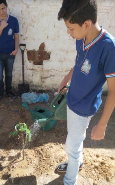 Atividades de Arborização. Escola Pedro Raimundo Rodrigues. Juazeiro-BA. 09/08/2017.