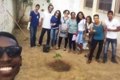 Arborização de escolas com sistema alternativo de irrigação