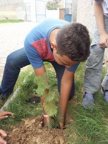 Atividades de Arborização. Escola Eduardo Coelho. Petrolina-PE. 17-06-2016