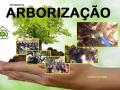destaque arborização 4