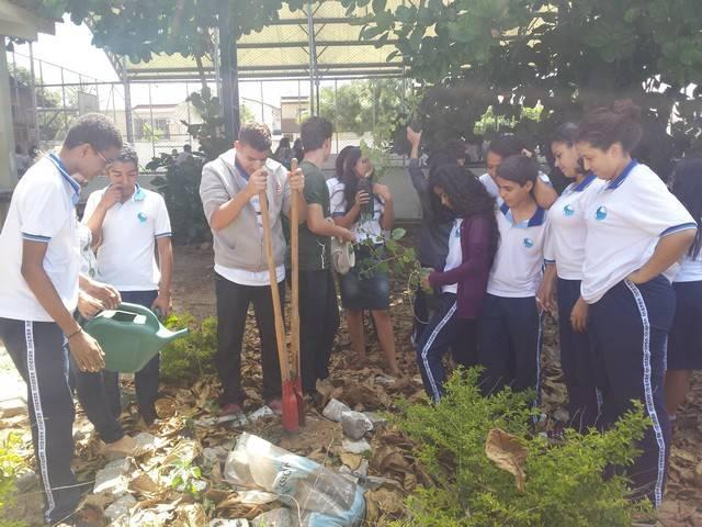 Atividade de Arborização. Escola Clementino Coelho. Petrolina-PE. 14.03.2016
