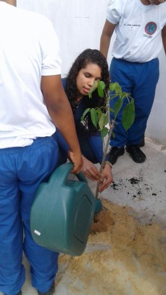 Atividades de Arborização da Vizinhança. Colégio da Polícia Militar. Juazeiro-BA. 07/04/2017.