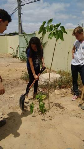 Atividades de Arborização. Escola Antonilho de França Cardoso. Juazeiro-BA. 23-09-2016