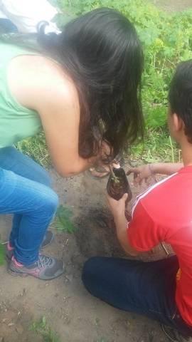 Atividade de arborização - Dom Malan - Idalino Bezerra - Petrolina-PE - 07.04.16
