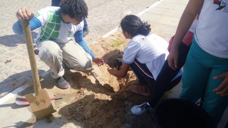 Atividade Arborização. Escolas em Petrolina-PE. 03/09/2019-12/09/2019.
