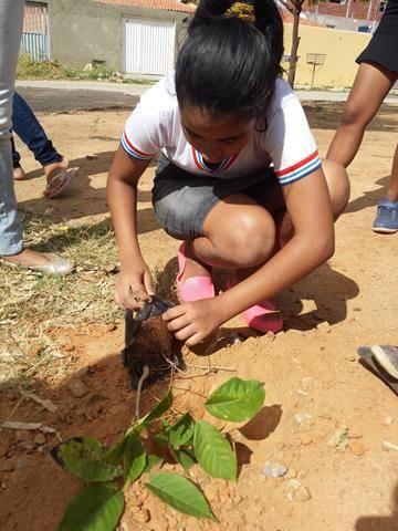Atividades de arborização. Escola Nossa Senhora Rainha das Grotas. Juazeiro-BA. 01-04-2016 (1)