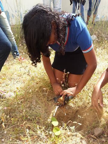 Atividades de arborização. Escola Nossa Senhora Rainha das Grotas. Juazeiro-BA. 01-04-2016 (5)