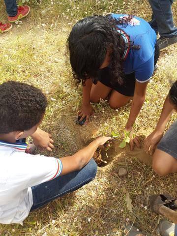 Atividades de arborização. Escola Nossa Senhora Rainha das Grotas. Juazeiro-BA. 01-04-2016 (6)