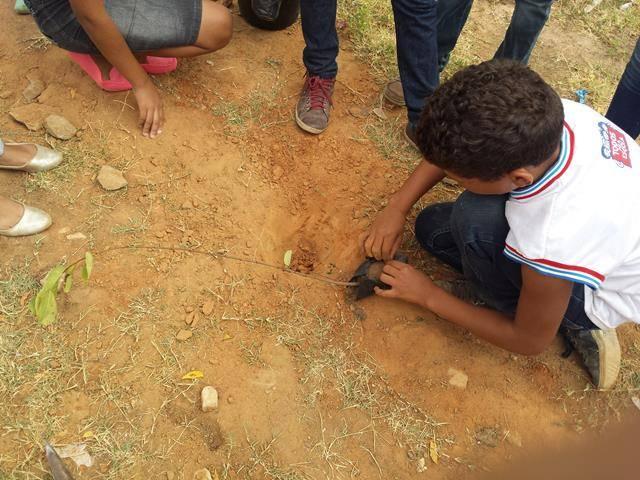 Atividades de arborização. Escola Prof Pedro Raimundo. Juazeiro-BA. 15-04-2016