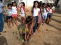 Atividade de Arborização mobilizou 110 pessoas nas escolas Municipal Carlos da Costa Silva e EMEI Edivânia Santos Cardoso, em Juazeiro, além do bairro Maringá.
