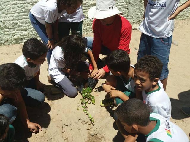 Atividades de Arborização. Escola José Joaquim. Petrolina-PE. 27-10-2016