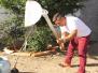 Atividades de Arborização