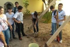 Atividades de arborização mobilizam alunos e professores
