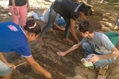 Atividades de Hortas Escolares Agroecológicas
