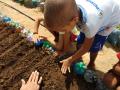 Atividade Horta Agroecológica. Escola CMEI Maria Teresa Brennand Coelho, CAPS. Petrolina-PE, Santa Maria da Boa Vista-PE. 29/10/2019-01/11/2019, 24/10/2019.