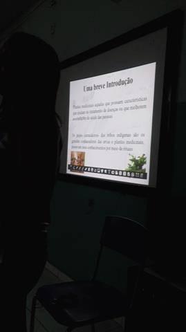 Plantas Medicinais. Escola Pedro Raymundo Pereira Rego. Juazeiro-BA. 25-05-2016