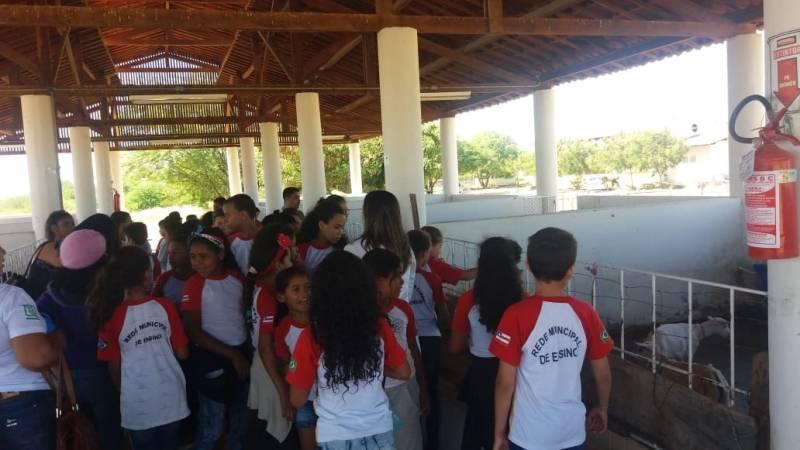 Visita Técnica ao Biotério da UNIVASF. Escola Maria de Lourdes Duarte. Juazeiro-BA. 07/05/2019