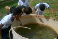 Buscas de focos do mosquito Aedes aegypti movimentam escolas