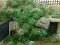 Catadores recebem mias de 2 mil garrafas Pets reunidas por estudantes