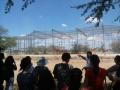 Congressistas realizam visita técnica ao Cemafauna