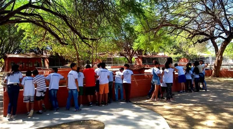 Atividade Visita Técnica ao Parque Zoobotânico. Escola Municipal Rubem Amorim Araújo. Petrolina-PE.  04/09/2019.