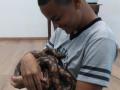 CONTATOS COM OS ANIMAIS DA CAATINGA