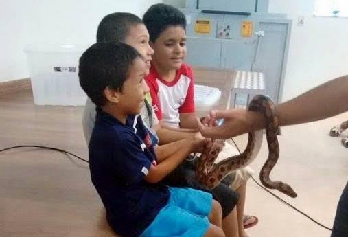 Animais da Caatinga 10