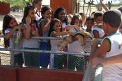 Contato com animais vivos da Caatinga