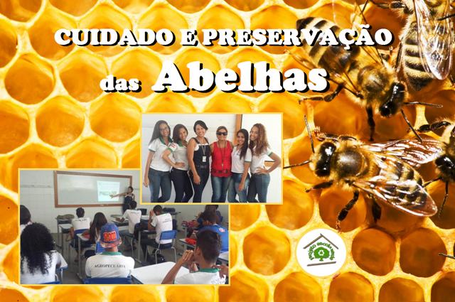 Cuidado e preservação das abelhas