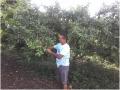 Cuidados com o solo sensibiliza pequenos produtores rurais. Petrolina-PE (3)