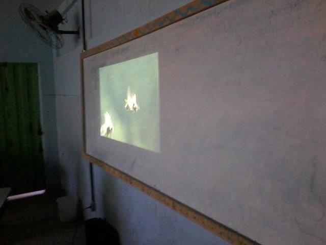 Cuidados e presevação das abelhas. Escola Antonilio de França Cardoso. Juazeiro-BA. 10-06- (5)