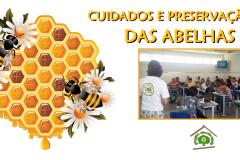 Cuidados e preservação das abelhas