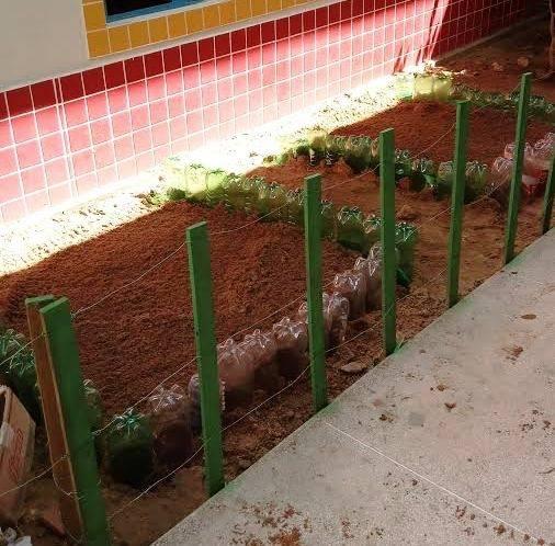Atividades de Horta Escolar Agroecológica. Escola de Educação Infantil Manoel Marques. Juazeiro-BA. 29/05/2017.