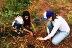 Em Valparaíso de Goiás, PEV desenvolve várias atividades socioambientais