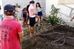 Enfrentando o desafio das hortas escolares