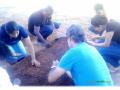 Atividades de Horta Escolar Agroecológica. Escola Pedro Raymundo Moreira Rego. Juazeiro-BA. 18/08/2017.