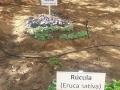 Feira de Ciências. Escola Rui Barbosa. Juazeiro-BA. 19-08-2016
