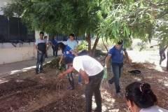 Escolas desenvolvem ações de hortas agroecológicas e compostagem